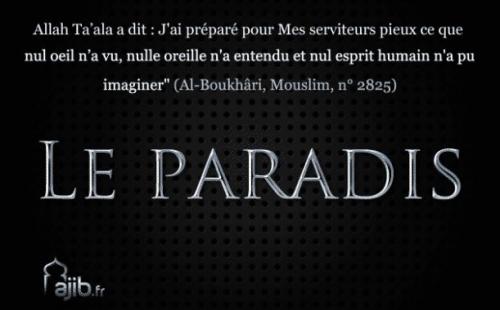 Allah, Conseil Dieu, Femme, Homme, Islamisme, Musulman, Paradis, Paradis musulman, Humour,